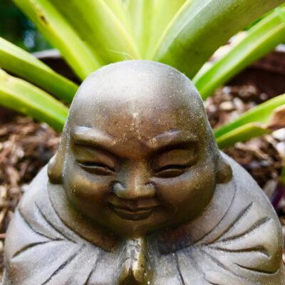Pineapple Buddha
